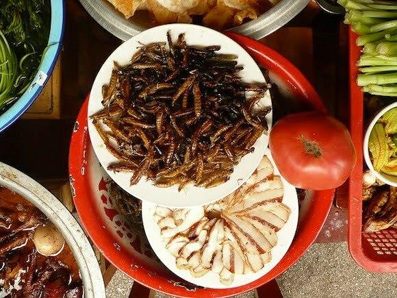Algen, insecten en kweekvlees: het eten van de toekomst