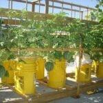 foto: Global Buckets