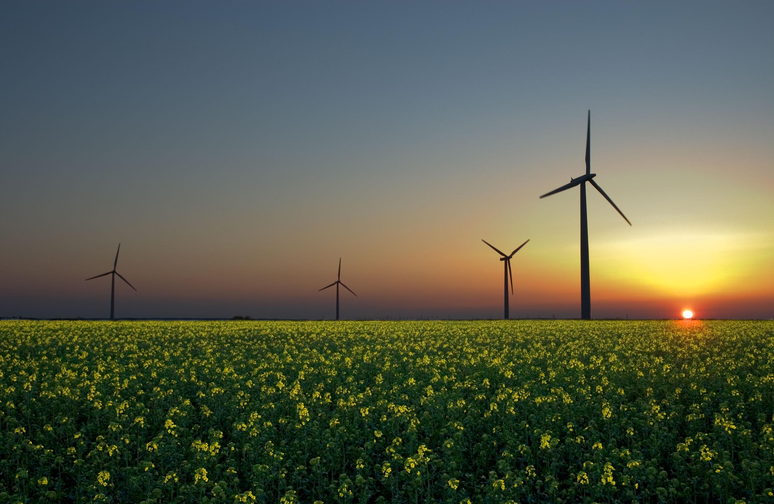 Milieu-organisaties: Behalen doelen energieakkoord belangrijk dan ooit