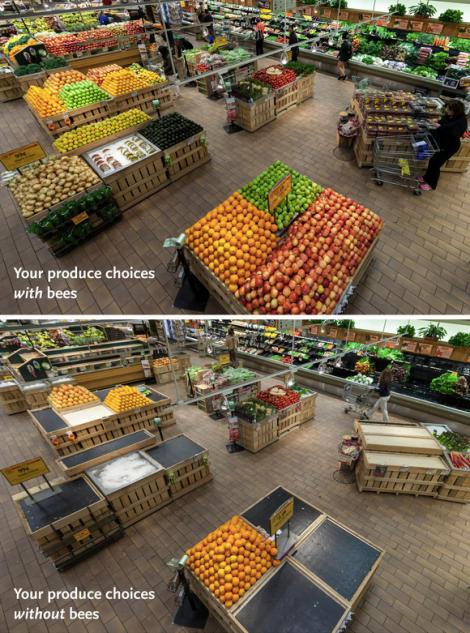 Foto: Whole Foods Market