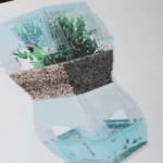 Video Aqualibrium