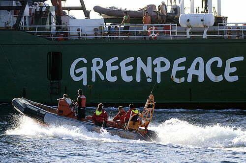 Greenpeace-activiste Faiza Oulahsen op borgtocht vrij