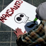 Monsanto. Foto: msdonnalee, Flickr