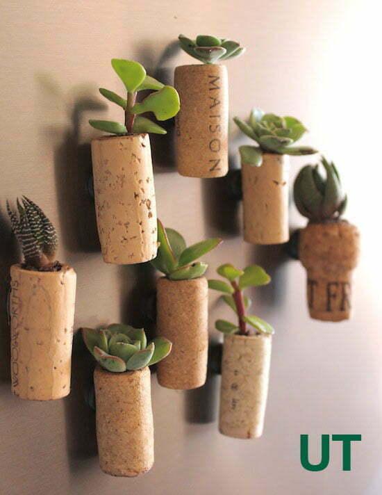 Weekendproject: koelkastmagneten met levende plantjes in kurk maken