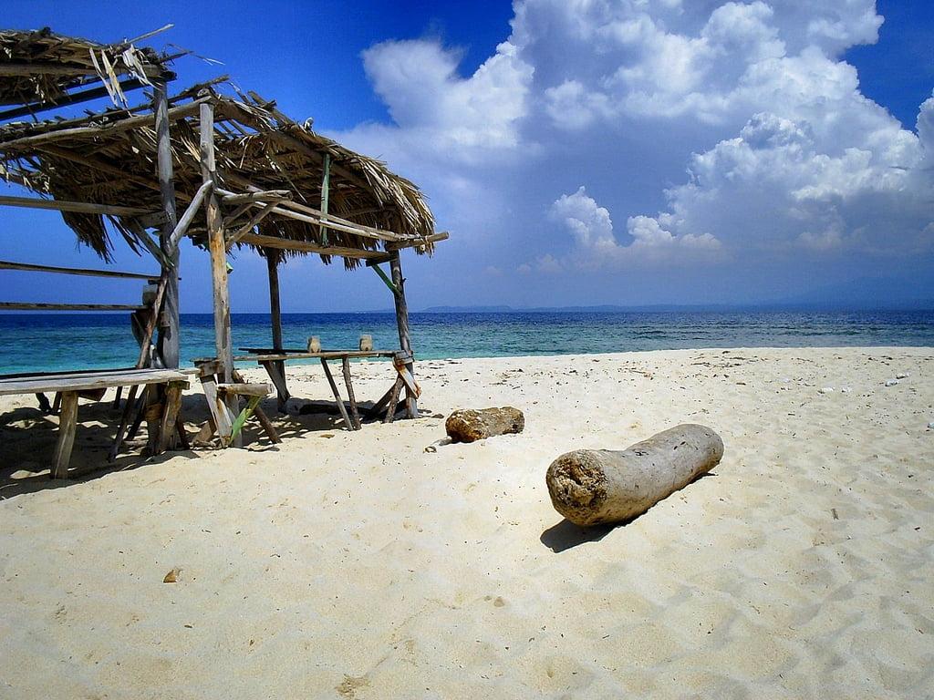Raadsel welk voedsel kun je het beste meenemen naar een onbewoond eiland - Centraal eiland om te eten ...