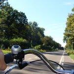 Rustig naar werk fietsen. Foto: Ines Saraiva Flickr