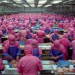 Industrieel vlees vraagt om problemen. Foto: still uit Samsara documentaire
