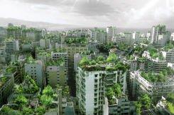 Amsterdam plant eerste verticale bos op flats