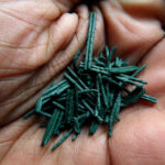 Superfood spirulina. Bron: Willpower Stidos, Flickr