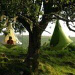 Rondhangen in de bomen met de Cacoon. Foto: Inhabitat