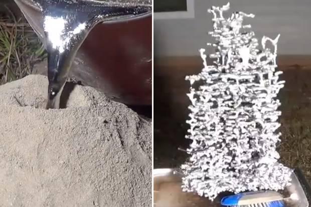 'Kunstenaar' giet gesmolten aluminium in mierennest (video)