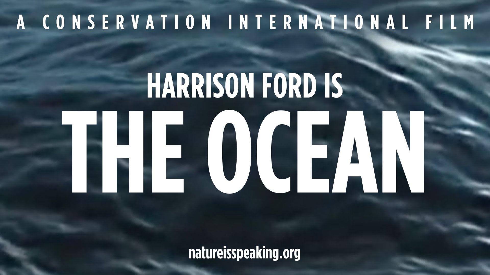 Zo klinkt de stem van de oceaan (video)