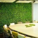 Groene gevels bieden vele voordelen. Foto: Skydreams