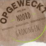 Schermafbeelding website Opgeweckt Noord