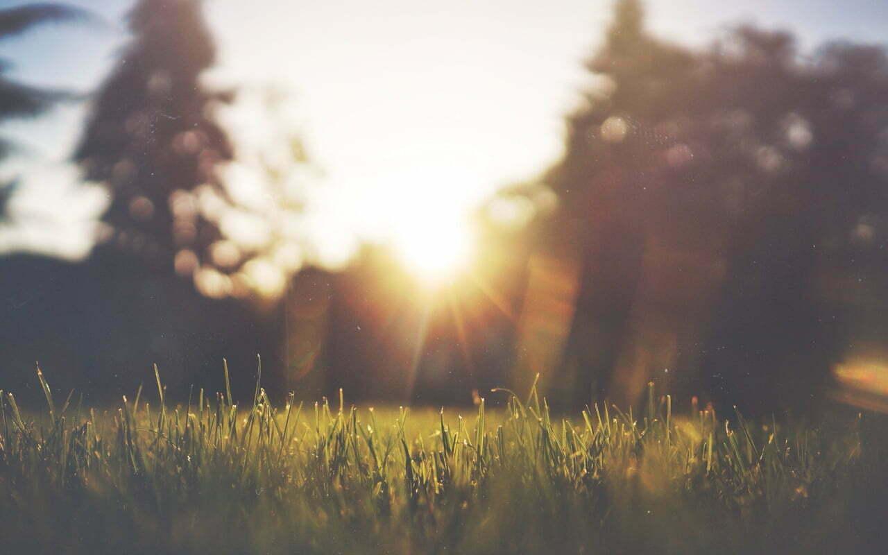 9 gezondheidsvoordelen van zonlicht