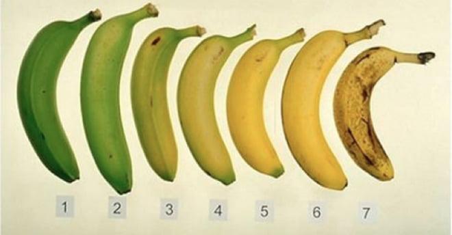 Welke banaan is beter