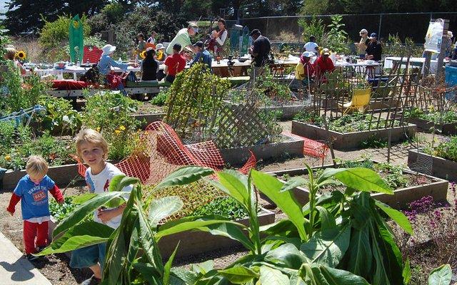 10 voordelen van een gemeenschappelijke tuin