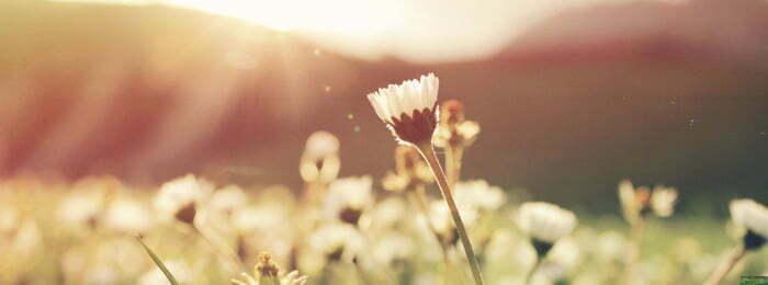 Gezondheidsvoordelen van zonlicht