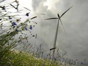 Let op: niet alle groene stroom is even groen. Foto: SCA Svenska Cellulosa Aktiebolaget, Flickr