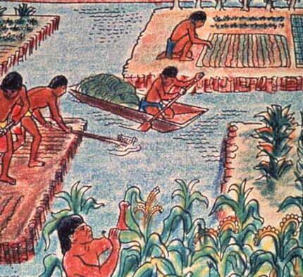 Eeuwen oude Azteken techniek hergebruikt in aquaponics