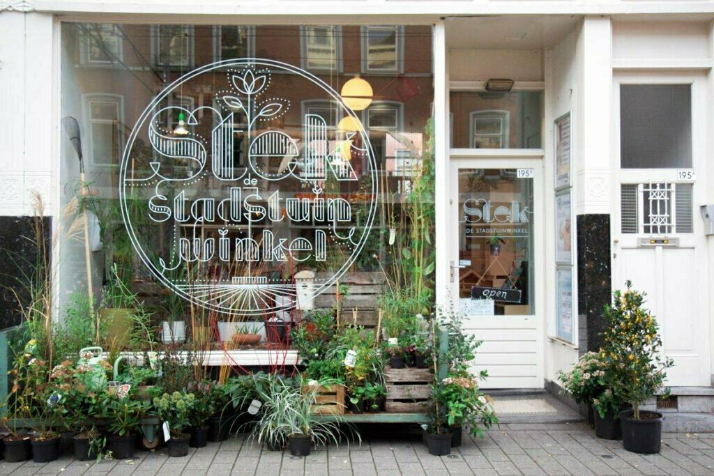 Foto: STEK de Stadstuinwinkel