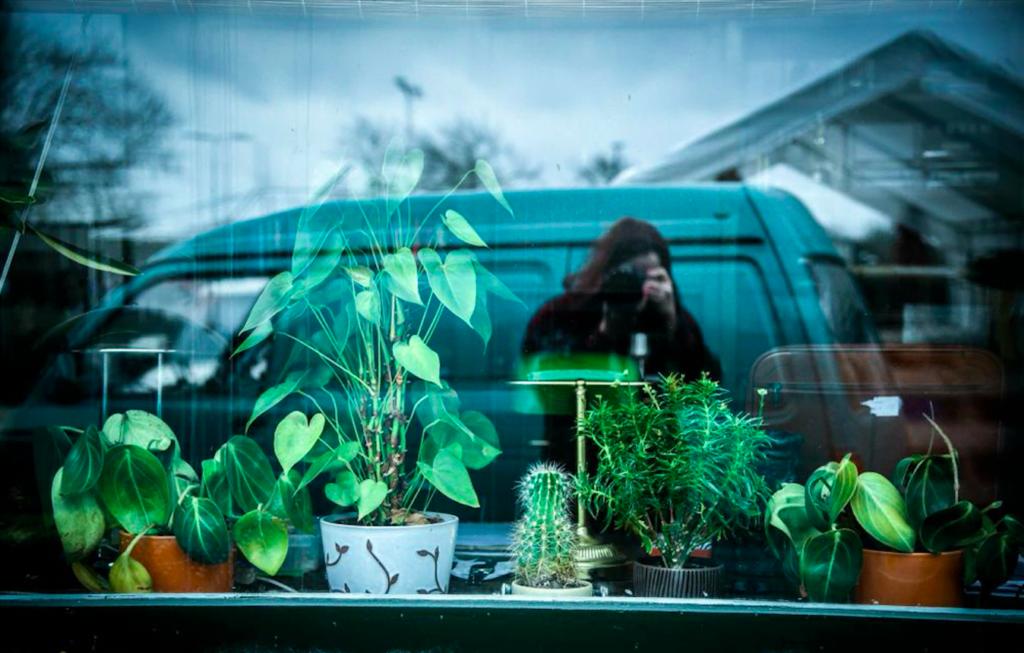 Afbeelding: Het Plantenhuis . gemaakt door Aviva Bing Creations