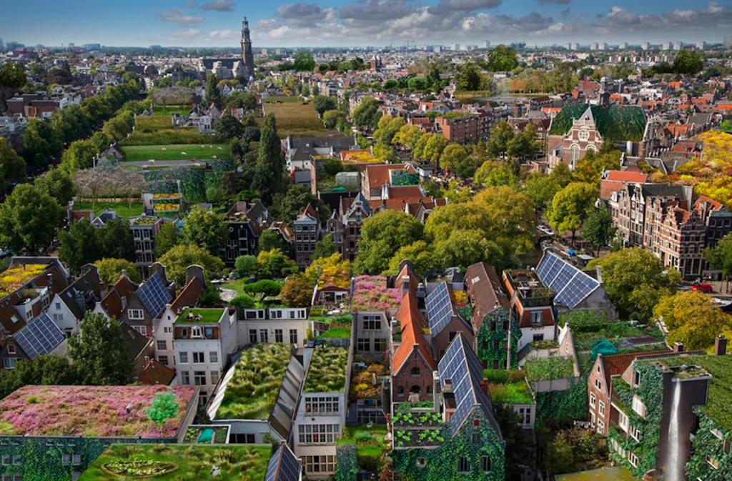 Afbeelding: Rooftop Revolution