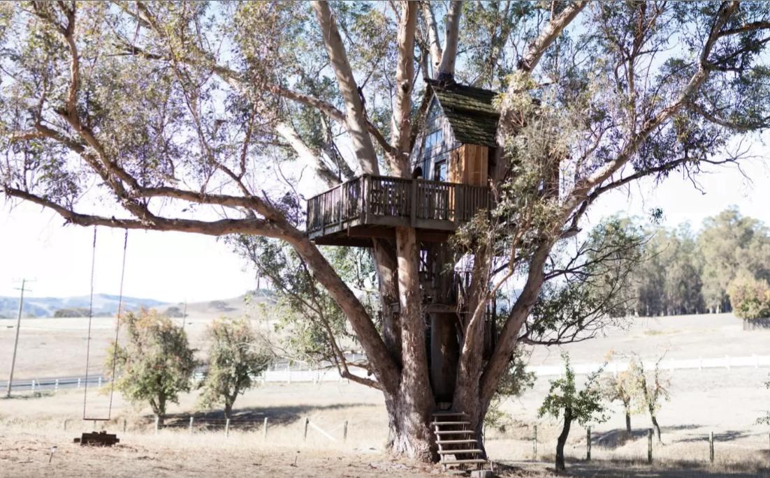 Inspiratie in een idyllische boomhut