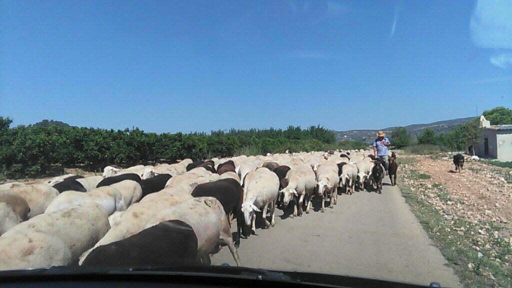 Afbeelding: off-grid in Spanje