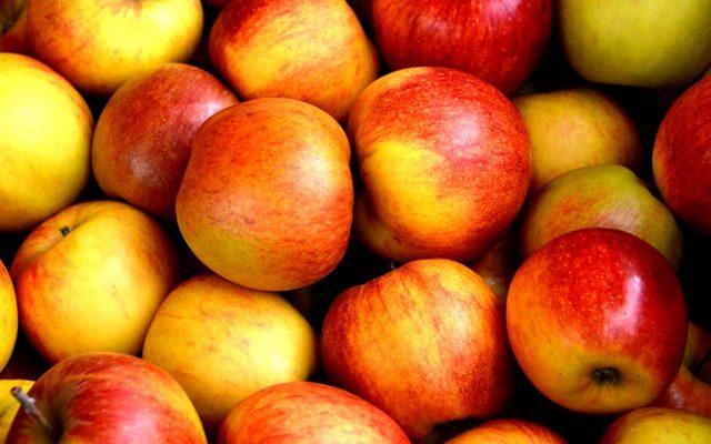 FruitYourWorld verbindt mensen met fruitbomen