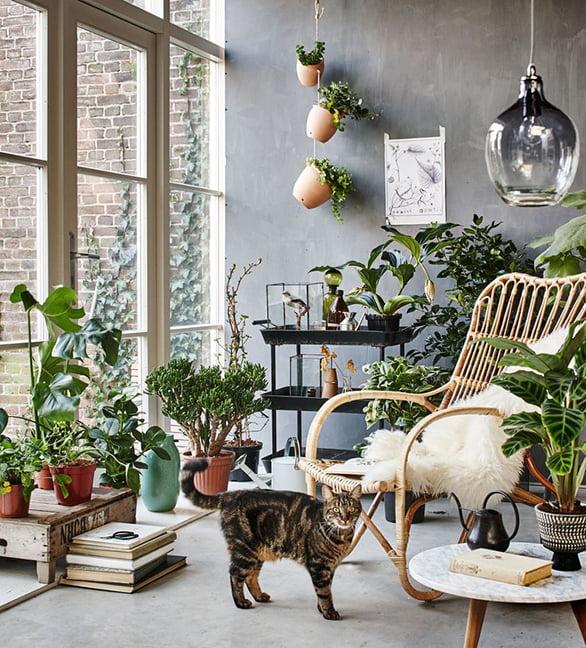 5 Ideeen Om De Natuur In Huis Te Halen Hetkanwel