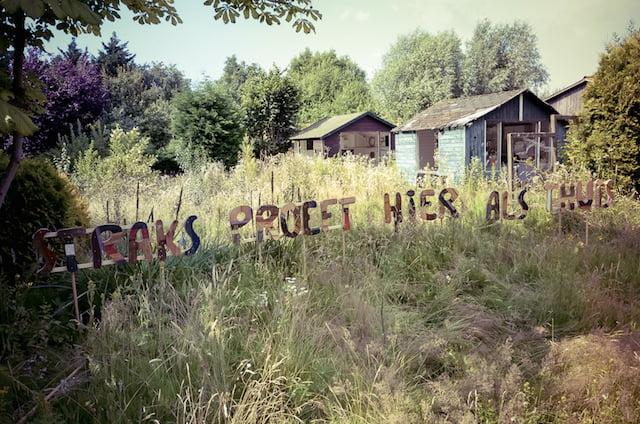 Proeftuin Eramsusveld, foto - Ivo Bakker