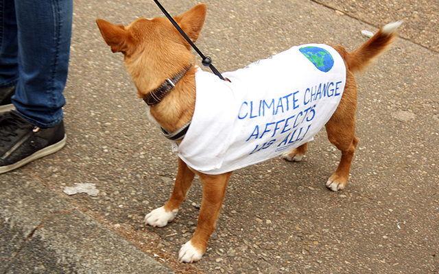 Borden Climate March