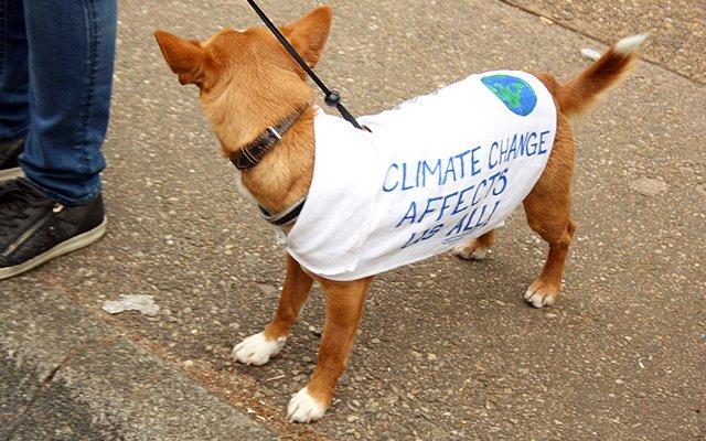 7x de beste protestborden van de People's Climate March