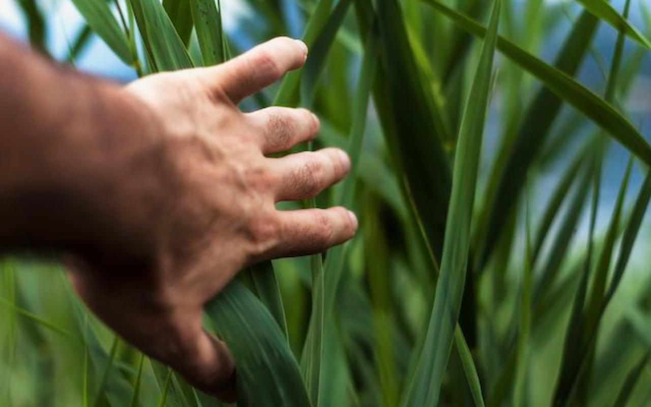 Deze 5 materialen maken de wereld een stuk duurzamer