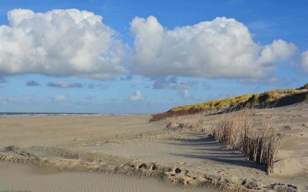 Word jij de nieuwe boswachter op Texel?