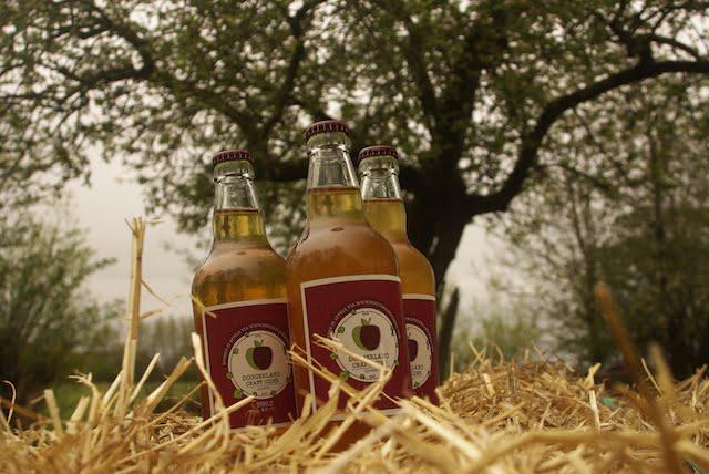 Doggerland Craft Cider 2