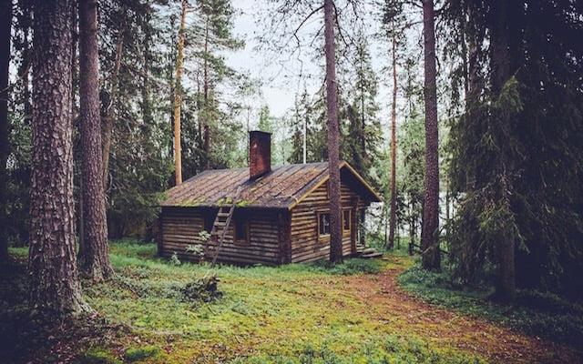 Gezocht tiny house bewoners voor in een natuurgebied for Klein huisje in bos te koop