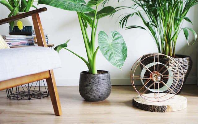Studio Perspective - Duch design duurzame designlamp gemaakt van afval