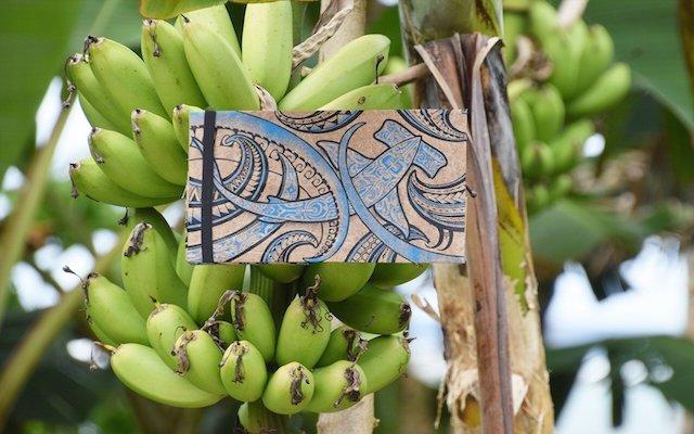 Duurzaam textiel uit de bananenboom