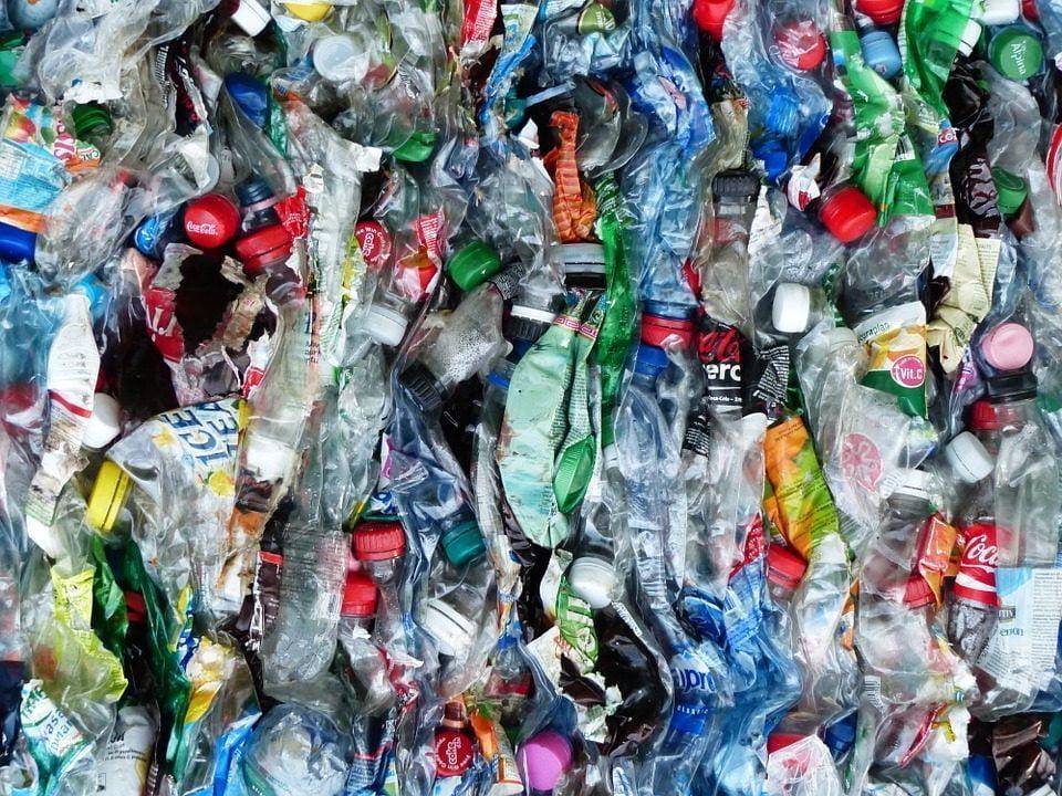 Plasticloos leven