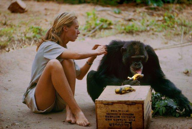 Keuzestress vermijden: 7 films die je echt wil zien op Idfa 2017.