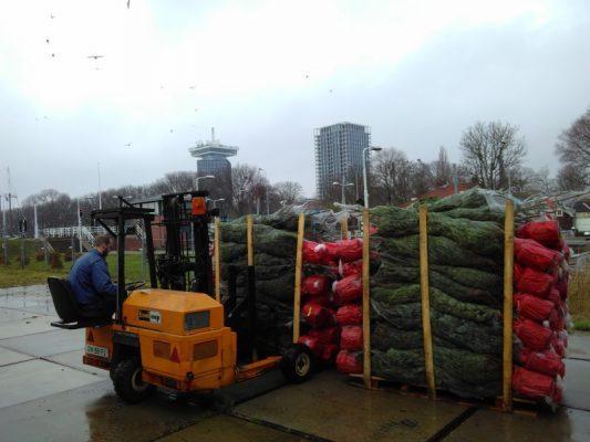 Welke stad volgt? Amsterdam krijgt echt kerstbomenbos