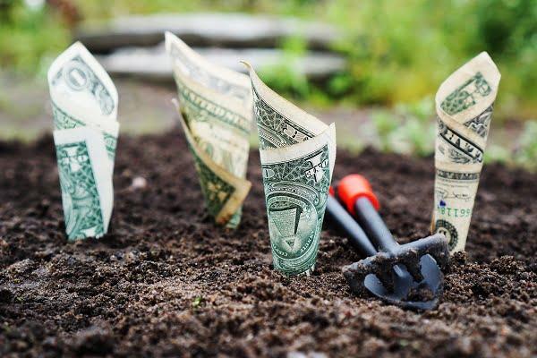Maak het verschil met een duurzaam en groen pensioen