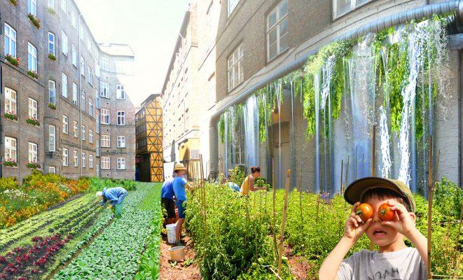 Vijf inspirerende voorbeelden van Urban Farming