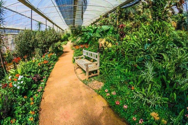 The New Farm: een broedplaats voor nieuwe voedselproductie