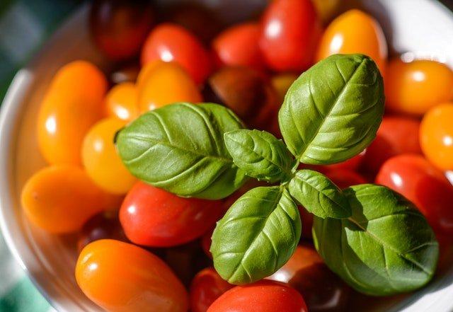 groente verbouwen
