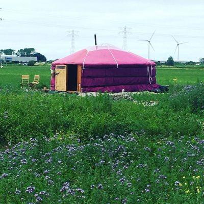 Wonen in een yurt in ecodorp Frijlân