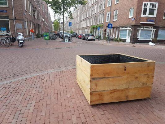 Amsterdamse bomen krijgen een tweede leven in hun eigen stad