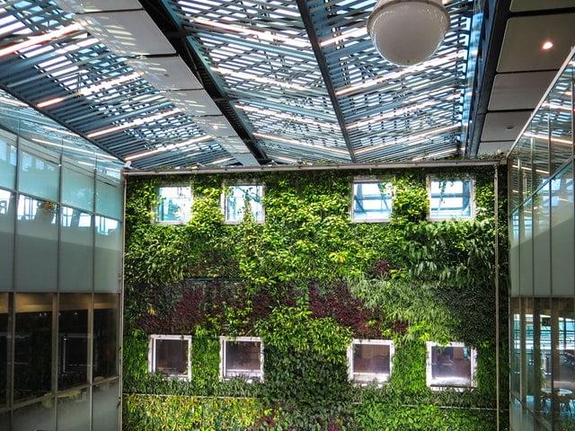 Op duurzame dinsdag bleek: we willen groene steden, slim vervoer en geen plastic
